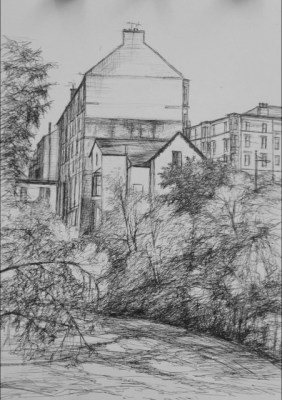 view from the kelvin