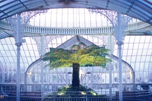 kibble palace amazing jim byrne