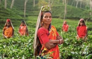 PIXABAY INDIAN WOMAN