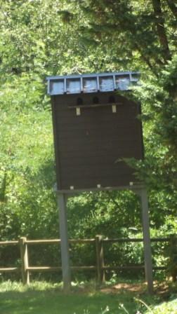 third para pigeon house