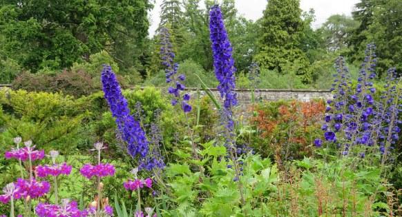 flowers balloch park