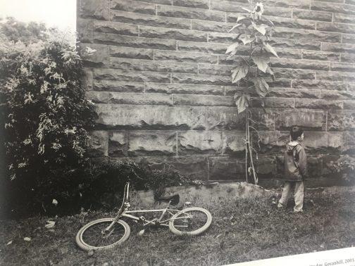 wee boy bike 2001 govanhill