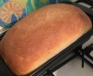 leela's bread