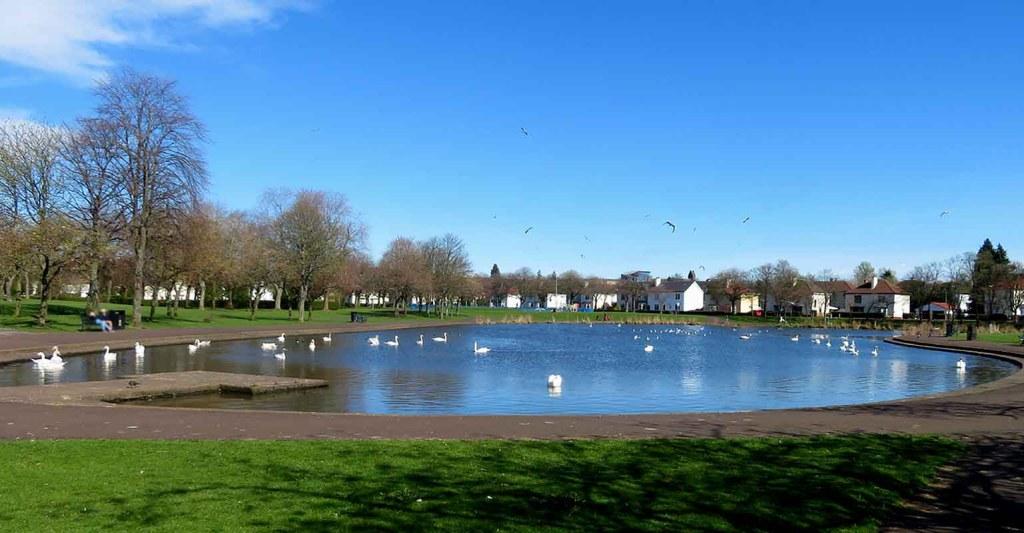 The Park Pond. Glasgow