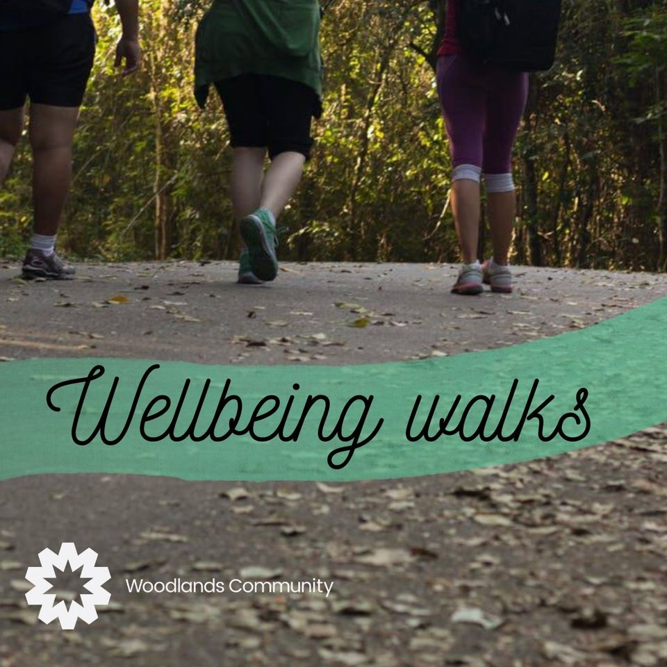 wellbeing walks woodlands