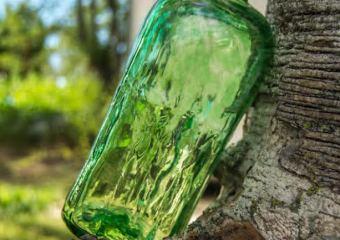 Green + Sustainability