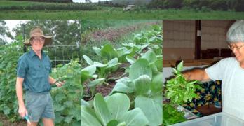 Sandy Creek Organic Farm