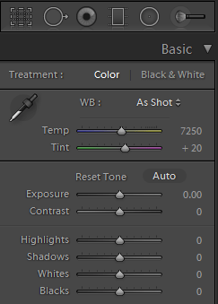 Lightroom basic panel