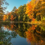 Fall colors in Maine near Boothbay by michigan photographer Joe Clark