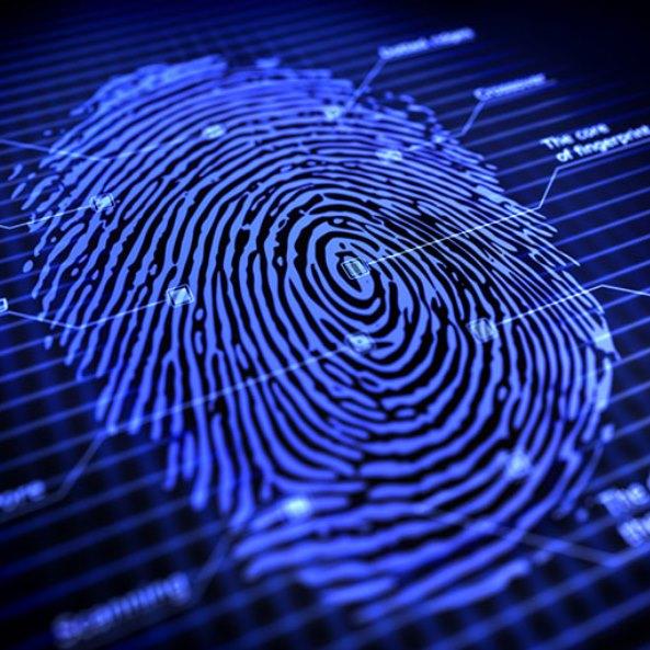 Dermalog Fingerprint Biometrical Data Scanner