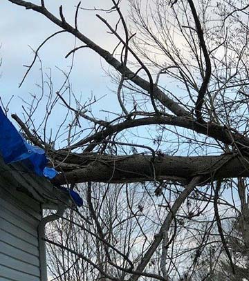 Wind and Storm Damage Restoration