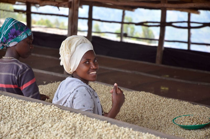 Glen Lyon Coffee Rwanda 2015