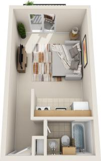 Studio / 1 Bath / 325 sq ft / Rent: $850
