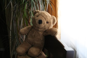 Just Teddy