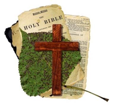 bible & leaf