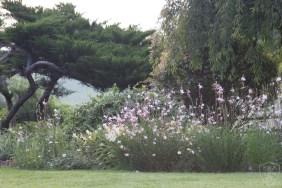 Gardens (74)