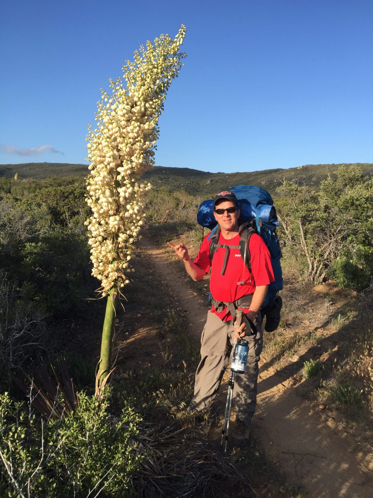 PCT – CA Section A Day 2