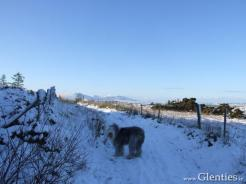 Winter in Glenties