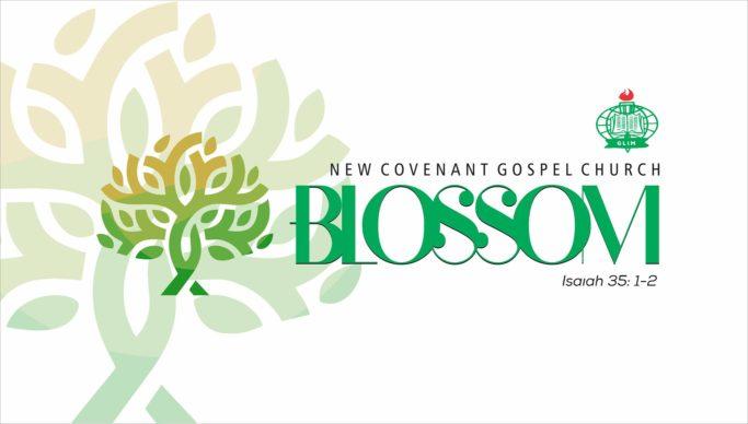 BLOSSOM – Rev. Felix Omobude