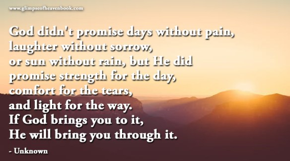 God didn't promise days without pain, laughter without sorrow, or sun without rain, but He did promise strength for the day, comfort for the tears, and light for the way. If God brings you to it, He will bring you through it. - Unknown
