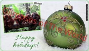 Greeting-card-Happy-Holidays-Singapore-Glimpses-of-The-World