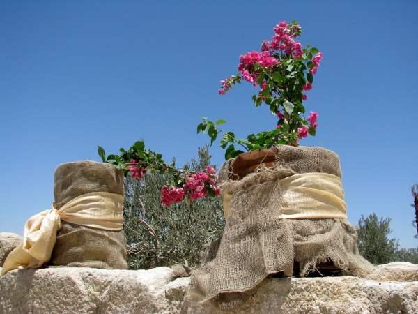 Jordan-travel-Mount-Nebo-Glimpses-of-The-World