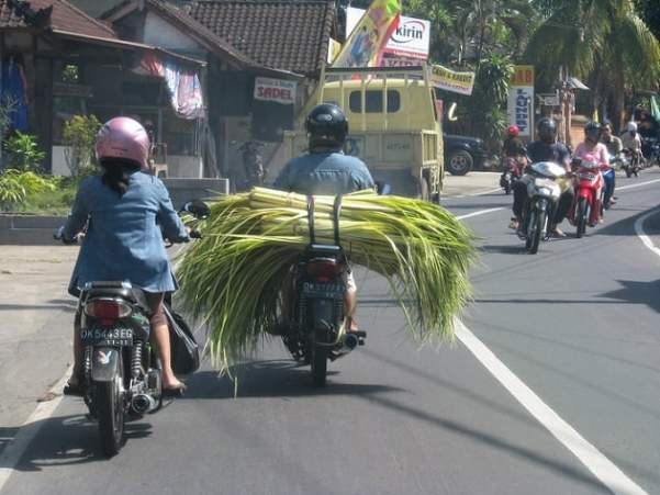 Bali-island-road-Glimpses-of-The-World