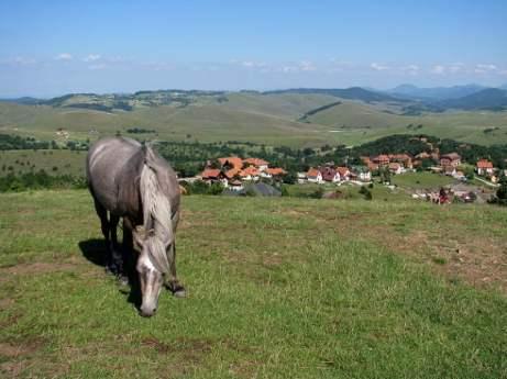 Serbia-travel-Zlatibor-Glimpses-of-The-World