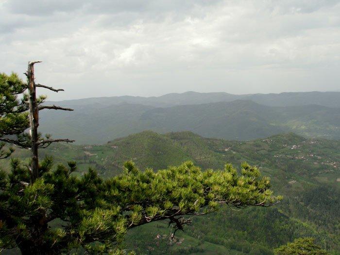 Serbia-travel-Tara-Glimpses-of-the-World