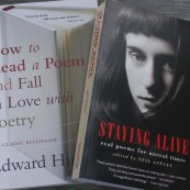 2 poetry books
