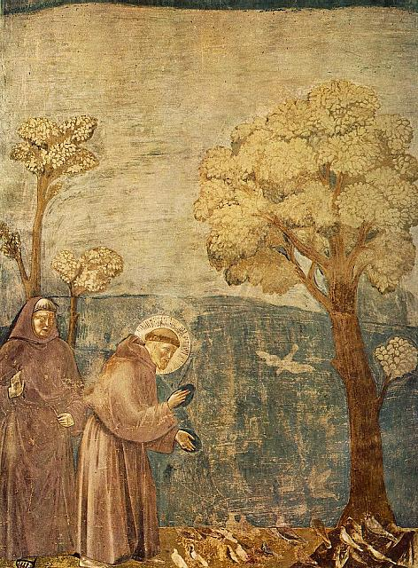 Francesco predica agli uccelli