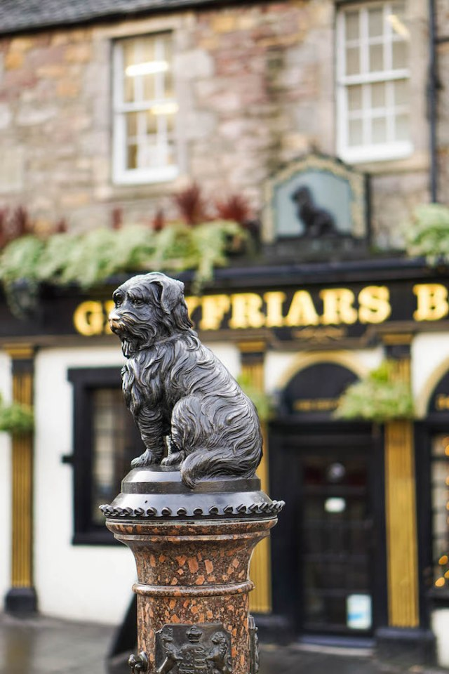 Greyfriar's Dobby, Must-See things in Edinburgh, Free activities in Edinburgh