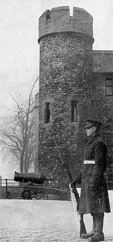Sentry at the Tower