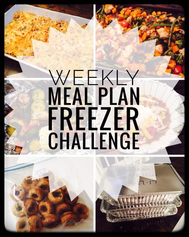 Week 1 of a Freezer Challenge to Meal Plan with the intention of freezing leftovers. Easy way to stock your freezer!