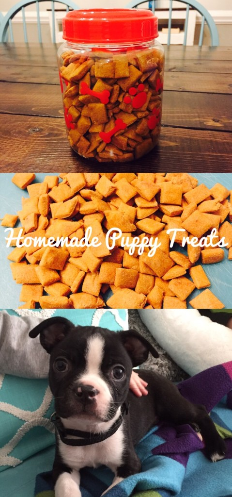 Homemade Puppy Treats #puppytreats