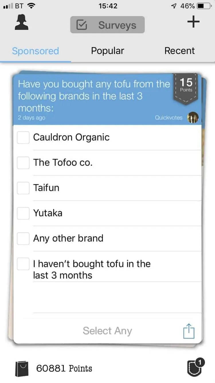 make money in your lunchtime with toluna
