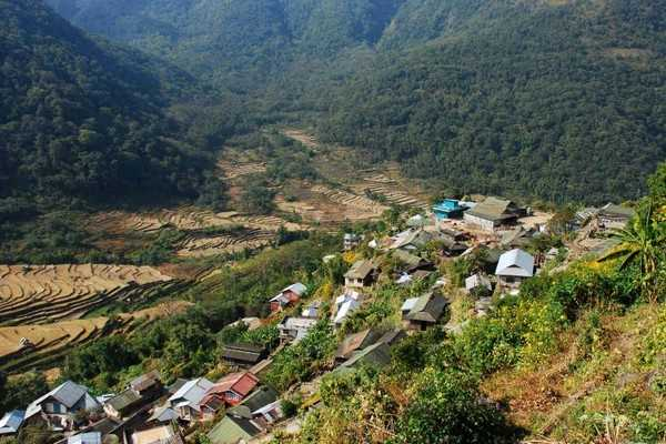 Khonoma Village - India