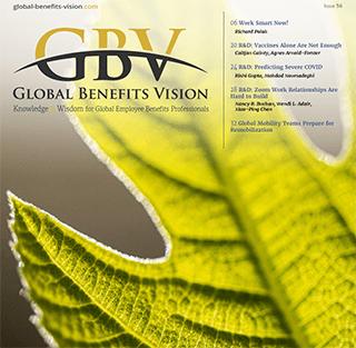 GBV-Mag53-ad320