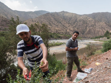 CEPF features work with Imegdale and Ait M'hamed communities in High Atlas