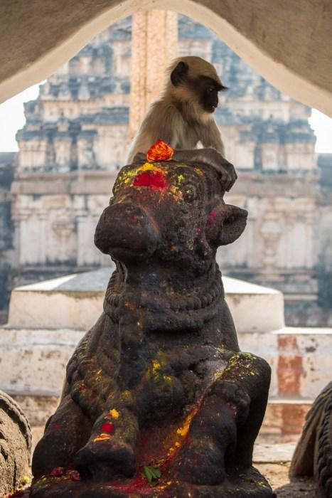 Nandi and monkey Virupaksha Temple