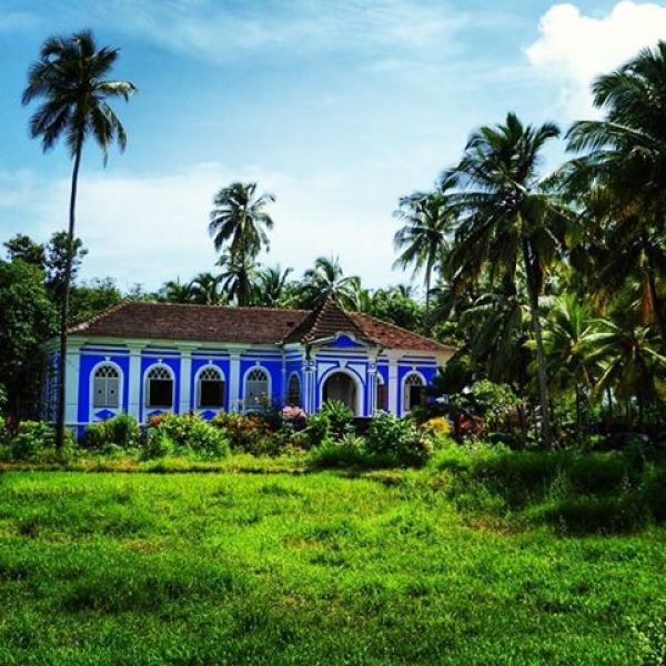 Portuguese house and green fields in Goa during monsoon season