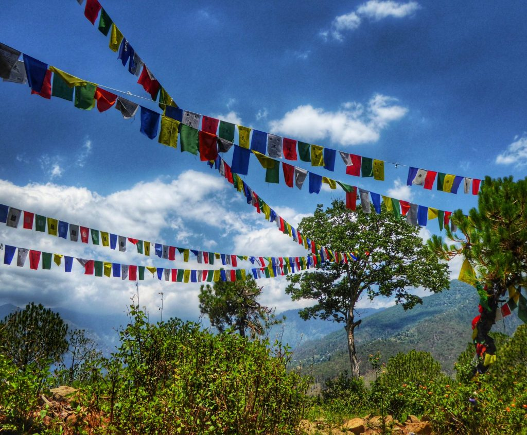 Colourful Tibetan prayer flags are all around Bir Billing spreading prayers and good blessings in the wind