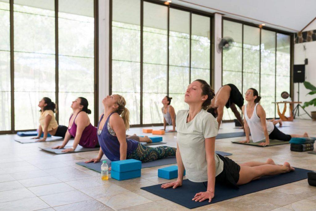 wonderland yoga retreats in thailand