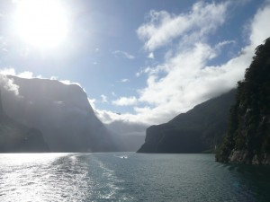 cruise milford fjord new zealand