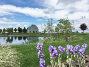 Top Wineries Walla Walla