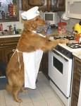 Dog Baking in Apron
