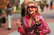 Reese Witherspoon as Elle Woods and her dog, Bruiser, in Legally Blonde. Photo Credit: tvtropes.org