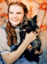 Judy Garland as Dorothy and her dog, Toto, in the film, Wizard of Oz.
