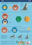 Evolution of Domesticated Dog Infographic