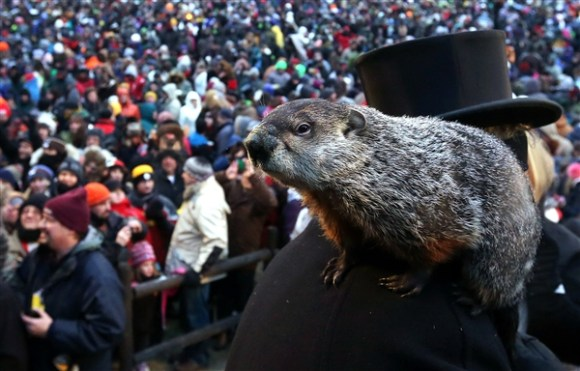 Punxsutawney Phil predicted an early spring for 2016. Photo Credit: Alex Wong / Getty Images